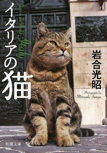 イタリアの猫 (新潮文庫)