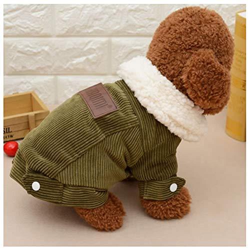 PETVE Herbst und Winter New Dicke Lederjacke, Kaschmirjacke Hund und Katze Kostüm, Qualität Haustier-Liebhaber Kleidung,B,M