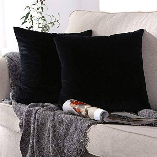 ONME Throw Pillow Covers Black 18x18 inchs 2 Pack Velvet Decorative Cushion Cover Square Pillowcases product image