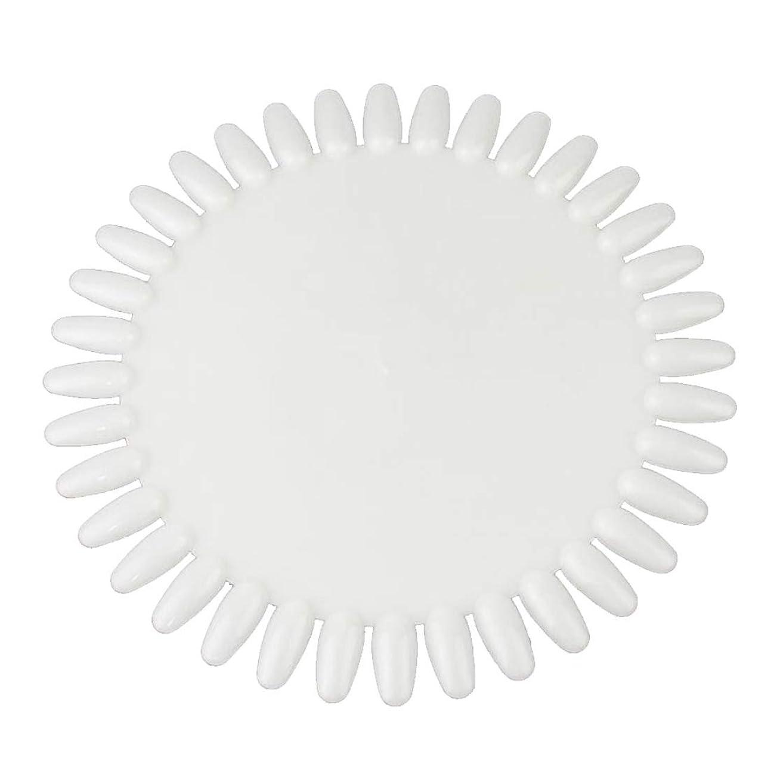 手当特許同様のWadachikis 特別な36色丸い釘磨きジェルカラーパレットチャート表示アートチップ大(None Natural color)