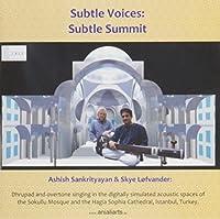 Subtle Voices : Subtle Summit