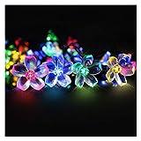 Solar lichterkette aussen, Mr.Twinklelight 6.5 Meter 50er LED Blumen Solar Lichterkette für Garten,...