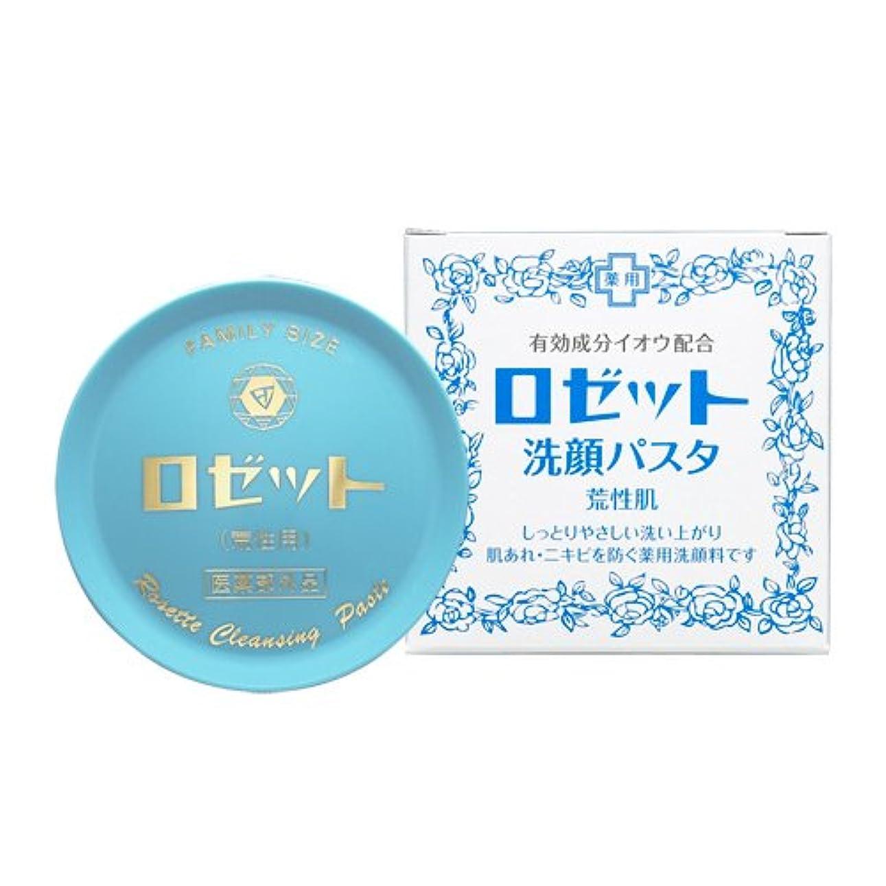 戻る筋ロゼット洗顔パスタ 荒性肌 90g (医薬部外品)