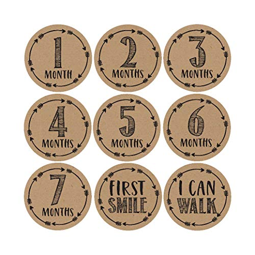16 Rustic Baby Milestone Stickers, 12 Monthly Photo Picture Props for Girl or Boy Infant Onesie, 1st Year Belly Decals, Scrapbook Memory Registry Gift, Best Shower Basket Present, Unisex Birth Months