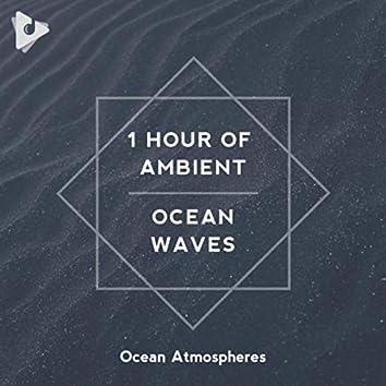 1 Hour of Ambient Ocean Waves