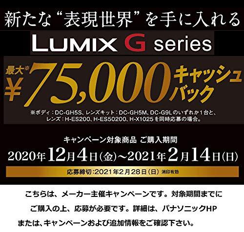 パナソニック大口径標準ズームレンズマイクロフォーサーズ用ルミックスLEICADGVARIO-SUMMILUX10-25mm/F1.7ASPH.ブラックH-X1025