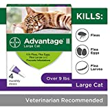 Flea Prevention Cats, over 9 lbs, 4 doses, Advantage II