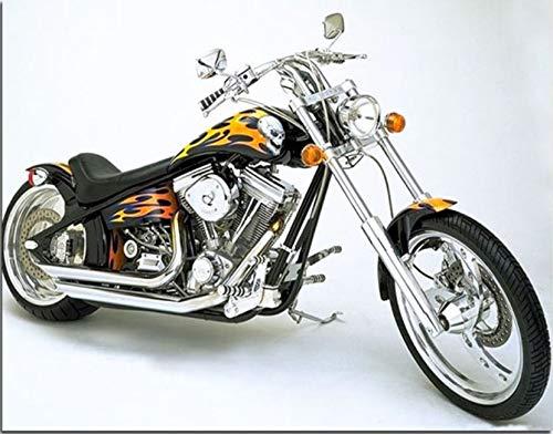 Suubboo Frameless Diy Motorfiets Kleurplaten Door Getallen Moderne Muurkunst Foto's Op Canvas Schilderen Door Getallen Voor Unieke Gift Home Decor 40X50Cm
