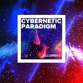 Cybernetic Paradigm