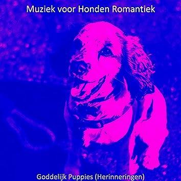 Goddelijk Puppies (Herinneringen)