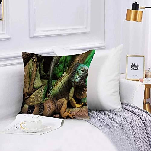 Lilatomer Funda de algodón 45 x 45 cm Iguana Verde Grande arbóreo principalmente Especies herbáceas de Lagarto, Sofá Throw Cojín Almohada Caso de la Cubierta para Sala de Estar 45x45cm