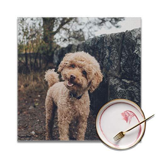 Houity Short-coated Brown Hond Wasbaar Zacht Voor Keuken Diner Tafelmat, Gemakkelijk te reinigen Handige Opvouwbare Opslag Placemat 12x12 Inches Set Van 4