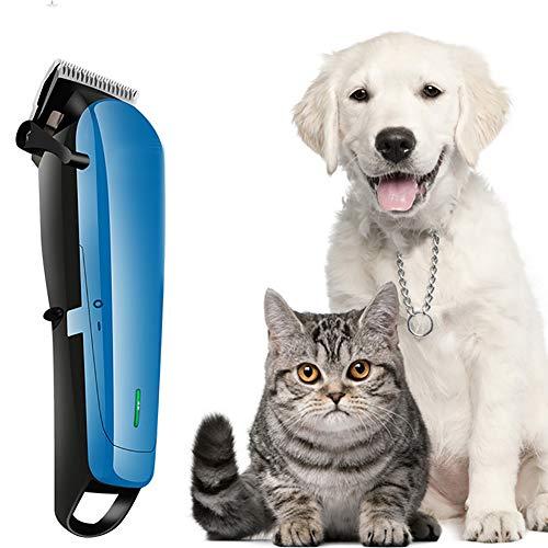 YWJH Tierhaarschneider, Tierhaarschneider Hunde Schermaschine, Wiederaufladbare Elektrische Hundeschermaschine Hundetrimmer für Hunde Katzen Haustier