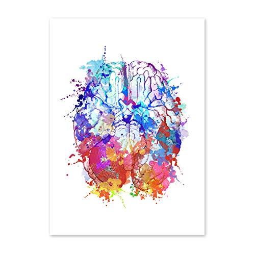 Guangzhouf Pintura de Lienzo de Arte de Pared de anatomía Colorida, Carteles e Impresiones, Cuadros de Pared, decoración de Oficina de médicos, 30X40cmNoFramed B