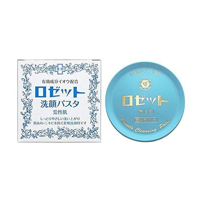 市場パイント開示する【お徳用 5 セット】 ロゼット 洗顔パスタ 荒性肌 90g×5セット