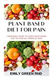 PLANT BASED DIET FOR PAIN: Your basic guide to using plant based diet to cure all forms of pain