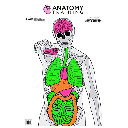Action Target - Anatomy Training Target - 100 Pack - Paper Targets, Shooting Targets, High Visibility (100 Pack)