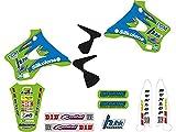 Blackbird Pegatinas para moto Motocross Graphic Replica Team Kawasaki Kx 125 250 1994 1995 1996 1997 1998 Kit