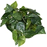 ZHXDXF 6.56 Ft Artificial Ivy Leaf Garland Plants Vine Fake Foliage Flowers Home Decor,Rohdea Artificial Flowers