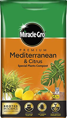 Miracle-Gro Premium Mediterranean & Citrus Compost 6L Easy Carry Pack