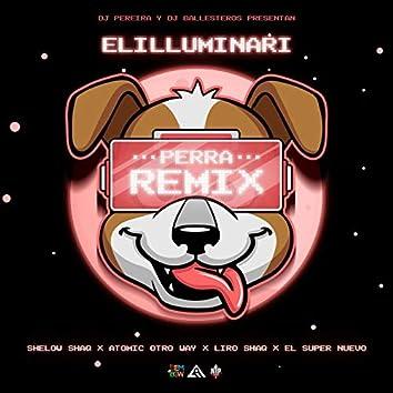 Perra (Remix)