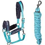 Fouganza - Kit de pelo y Longhi para Equitación Pony y caballo, color turquesa