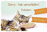Geburtstagskarte Nachträglich Basic Classic - Katze - Sorry - 11,6 x 16,6 cm