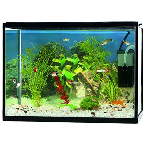 DKB Aquarium Complete set 18 L Nanobekken Starter Kit Filterpomp Aquaristiek