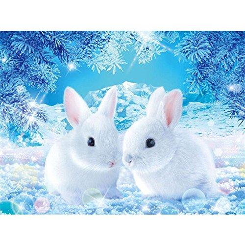 5D DIY Diamant Peinture, veyikdg 30 * 40cm Mignon Snow Rabbits Broderie Strass Peintures Enfants Enfants Chambre Salon Porte Murale Collé Point De Croix Adulte Travail Manuel Artisanat (Multicolor)