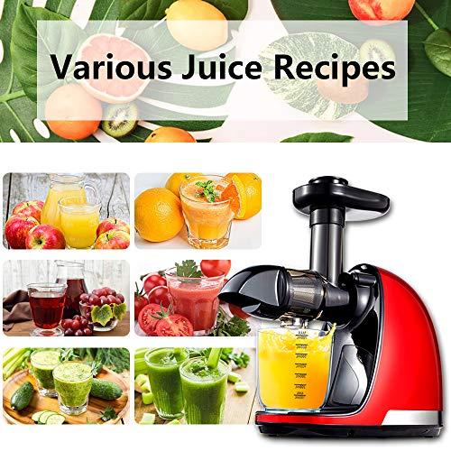 Slow Juicer – Günstiger Gemüse und Obst Entsafter Bild 5*
