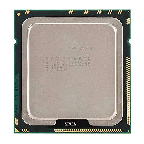 Yuyanshop CPU para Xeon X5650 seis núcleos doce hilos 2.66GHz 12M caché LGA1366 CPU versión oficial