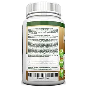 PSYLLIUM Husk Capsules - 1450mg Per Serving - 240 Capsules - Premium Psyllium Fiber Supplement - Great for Constipation, Digestion and Regularity - 100% Natural Soluble Fiber