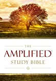 The Amplified Study Bible, Hardcover (Bible Amplified)