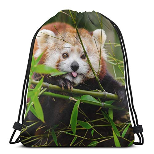Lsjuee Funny Red Panda Unisex Kordelzug Beam Port Bag, Fashion Gym Outdoor Sport Tragbarer...