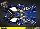 Kit Déco Quad pour/ATV Decal Kit for Yamaha Raptor (Rouge, Raptor 350)