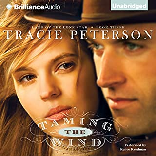 Taming the Wind audiobook cover art