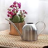 Mumusuki - Annaffiatoio in acciaio INOX per piante da interni e piante, con beccuccio lungo, in stile moderno (500 ml)
