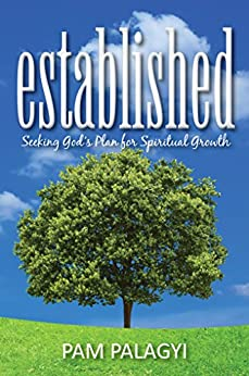 Established: Seeking God's Plan for Spiritual Growth (Foundations of Faith Book 1) by [Pam Palagyi]