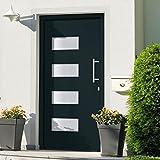 VIENDADPOW Türen Haustür Aluminium und PVC Anthrazit 100x200 cm
