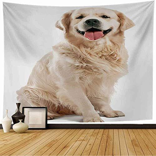 Tapiz de Pared Tapestry Perro perdiguero feliz de piel beige posando estudio animales vida silvestre perro raza labrador amarillo blanco saludable Wall Hanging 80X60inch