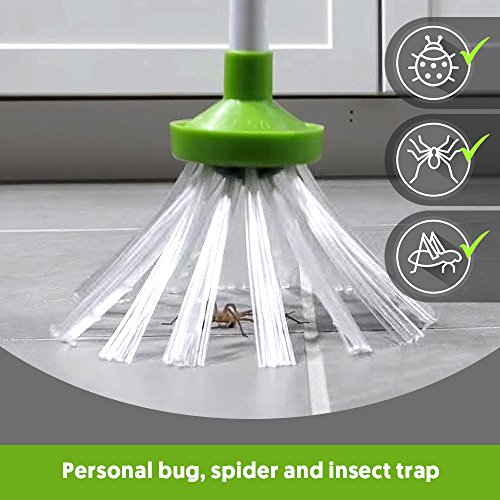 My Critter Catcher - Spider and Insect Catcher