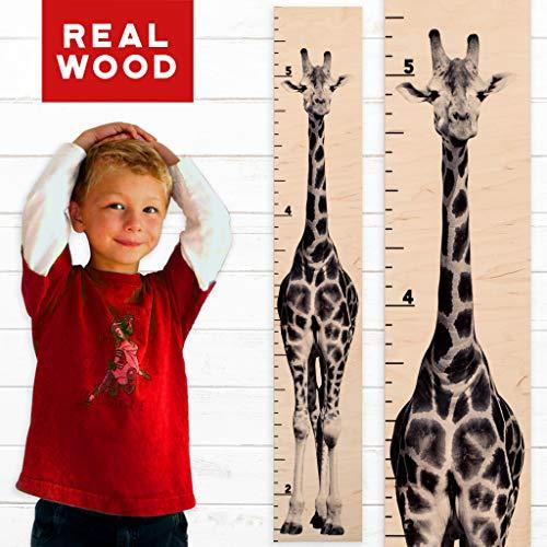 Giraffe Growth Chart | Wooden Height Chart for Babies, Kids, Boys & Girls (Tall Giraffe)