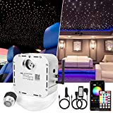 CHINLY 32w Twinkle 800pcs 0.03in 13.1ft Bluetooth RGBW LED Fiber Optic Star Ceiling Light,APP/Remote Music Mode Headliner Light Kit+Adapter+Cigarette Lighter+10 Crystals,for Headliner/Home Theater