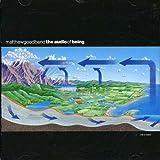Songtexte von Matthew Good Band - The Audio of Being