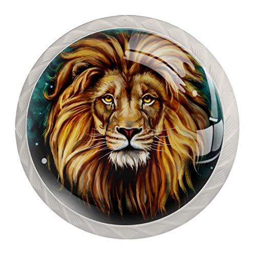 Schubladengriffe ziehen für Home Kitchen Dresser Wardrobe,Galaxy African Lion Portrait