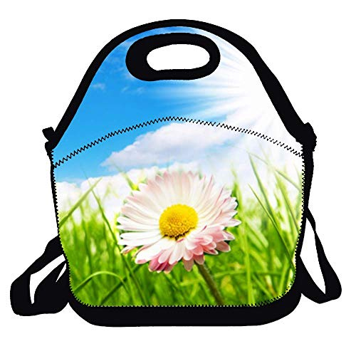 Amuseds Daisy Sun Reusable Lunch Bags Boxes For Men Women Adults Kids Toddler Nurses With Adjustable Shoulder Strap - Best Travel Bag