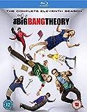 Big Bang Theory S11 [Edizione: Regno Unito] [Reino Unido] [Blu-ray]