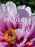 Pivoines histoire, botanique & culture