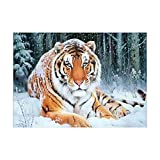 Tigre 5D Diamond Painting Kit Completo Drill Art Partial Drill Snow Tiger Rhinestone Ricamo Arts Craft Supply Wall Decor@40x50cm