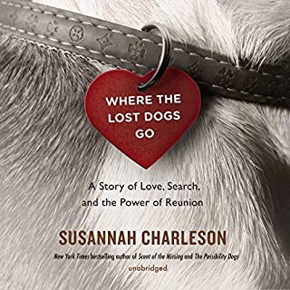 Where the Lost Dogs Go audiobook cover art